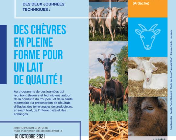 26 et 28 octobre 2021 : Des chèvres en pleine forme pour un lait de qualité !